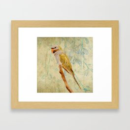 Derbyan Parakeet I Framed Art Print
