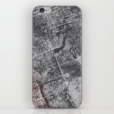 2012 Stone iPhone & iPod Skin