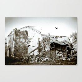 Black and White Flight Canvas Print