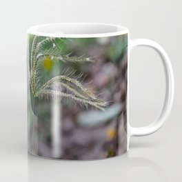 wonderful garden rose Till There Was You Coffee Mug