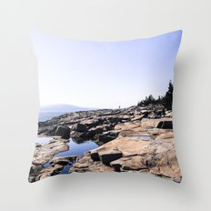 Alone in Acadia Throw Pillow