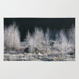 Young trees covered in a thick white frost. Norfolk, UK. Rug