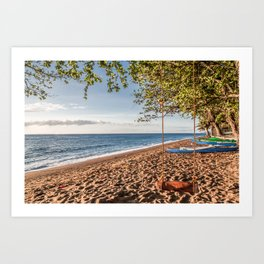 Dauin Beach at Sunrise Art Print