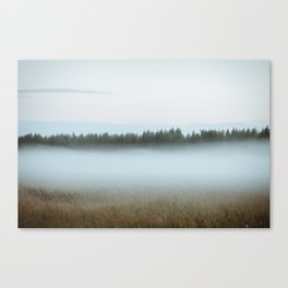 Misty forest 3/5 Canvas Print