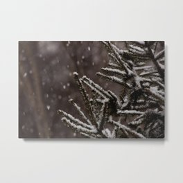 Snow Upon the Branches (Color) Metal Print
