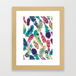 Mixed Feathers Framed Art Print