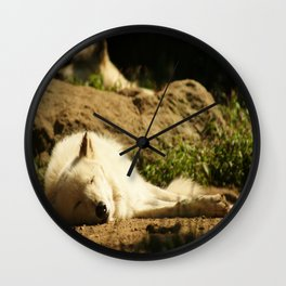 Sleeping white wolf in the summer sun Wall Clock