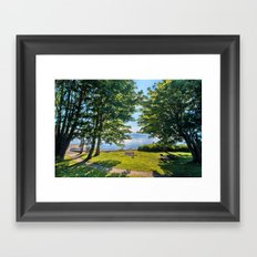 Summertime Park Framed Art Print