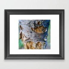 Natures Moments, Shedding.  Framed Art Print