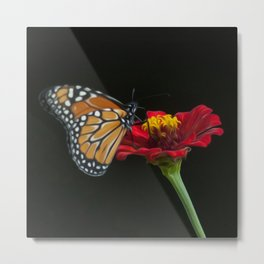 Butterfly Art 01 Metal Print