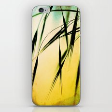 Grass in the light iPhone & iPod Skin