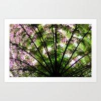 Ozzy Tree Fern Art Print