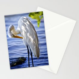 Great Egret Grooming Stationery Cards