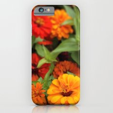 Zinnia Zinnia Slim Case iPhone 6s