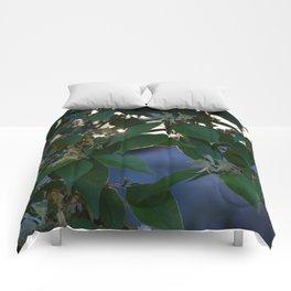 Sunlight on Honeysuckles Comforters