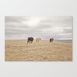 Travel Landscape Photograph, Iceland Canvas Print