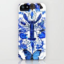 Ultramarine (pattern) iPhone Case