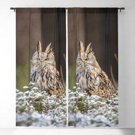 Western Siberian Owl Blackout Curtain
