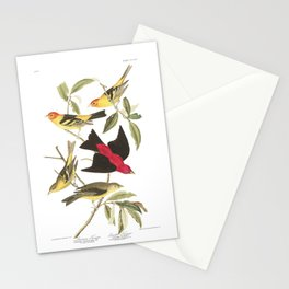 Louisiana Taneger and Scarlet Taneger - Vintage Illustration Stationery Cards