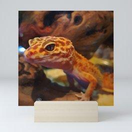 Leopard Gecko Mini Art Print