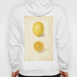 Vintage Botanical Lemon Hoody