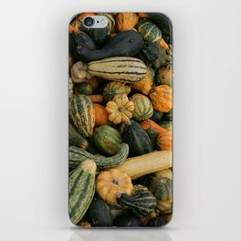 gourds 1, color photo iPhone Skin