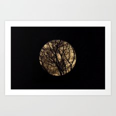 Full Moon though the trees Art Print