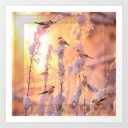 Bullfinch Birds In Sunny Winter Morning #decor #society6 Art Print