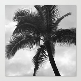 Classic Vintage Tropical Palm Tree Canvas Print