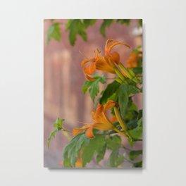 Lilies on the Wall Metal Print