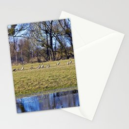 POETRY of WILDNESS Stationery Cards