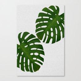 Monstera Leaf II Canvas Print