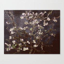 Vincent Van Gogh Almond Blossoms dark gray slate Canvas Print