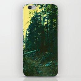 0422 iPhone Skin