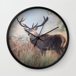 Red Deer Stag in Autumn Wall Clock