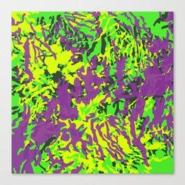 Funky Zebra Canvas Print