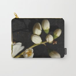 ovoid Carry-All Pouch
