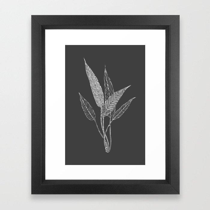 Black and White Botanical Drawing Framed Art Print