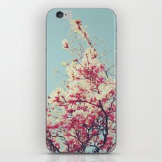 Retro Blossoms iPhone & iPod Skin