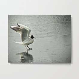 a different kind of landing Metal Print