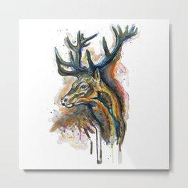 Elk Head Metal Print