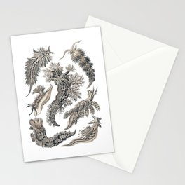 Ernst Haeckel Nudibranch Sea Slugs Monochrome Silver Stationery Cards