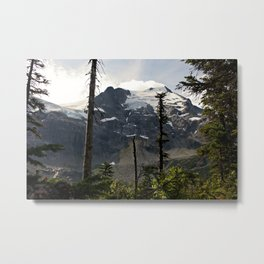 Lost in the forest of Whistler Canada Metal Print