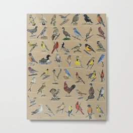 State Birds - with Names Metal Print