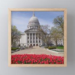 Capitol Spring 1, Madison Wisconsin Framed Mini Art Print