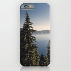 Through the Pines iPhone 6s Slim Case