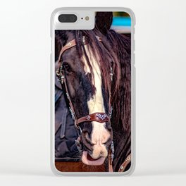 Concept Kaltblutmarkt 2018 : Horse eyes Clear iPhone Case