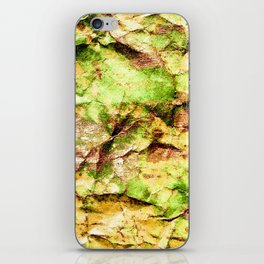 Map Of Elves iPhone Skin