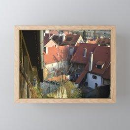 Ptuj Framed Mini Art Print