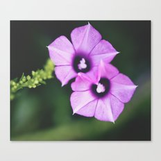 One&One Canvas Print